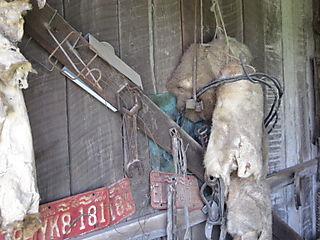 Farm 6-26-08 039