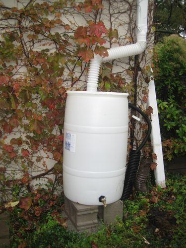 Rain barrel 004